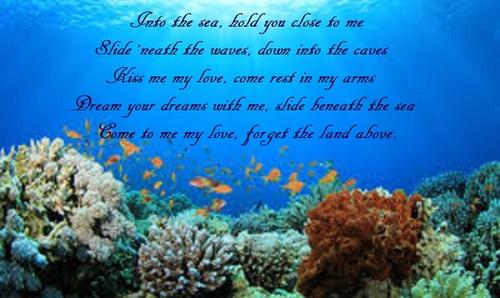coralreef.jpe